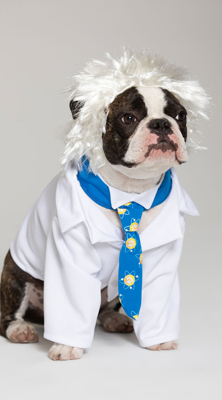 Al-bark Einstein Dog Costume by California Costumes