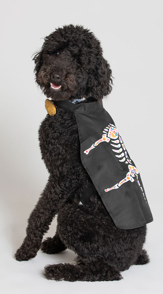 Day of the Dead Dog Cape Costume by Pet Krewe