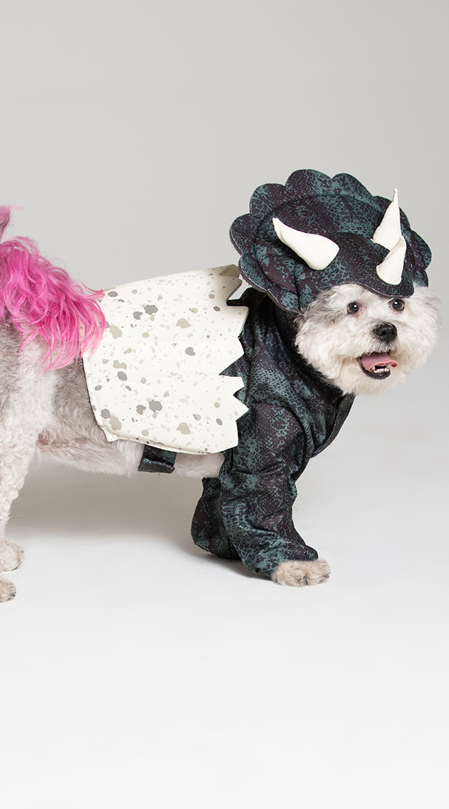 Dino Pup Dog Costume by California Costumes