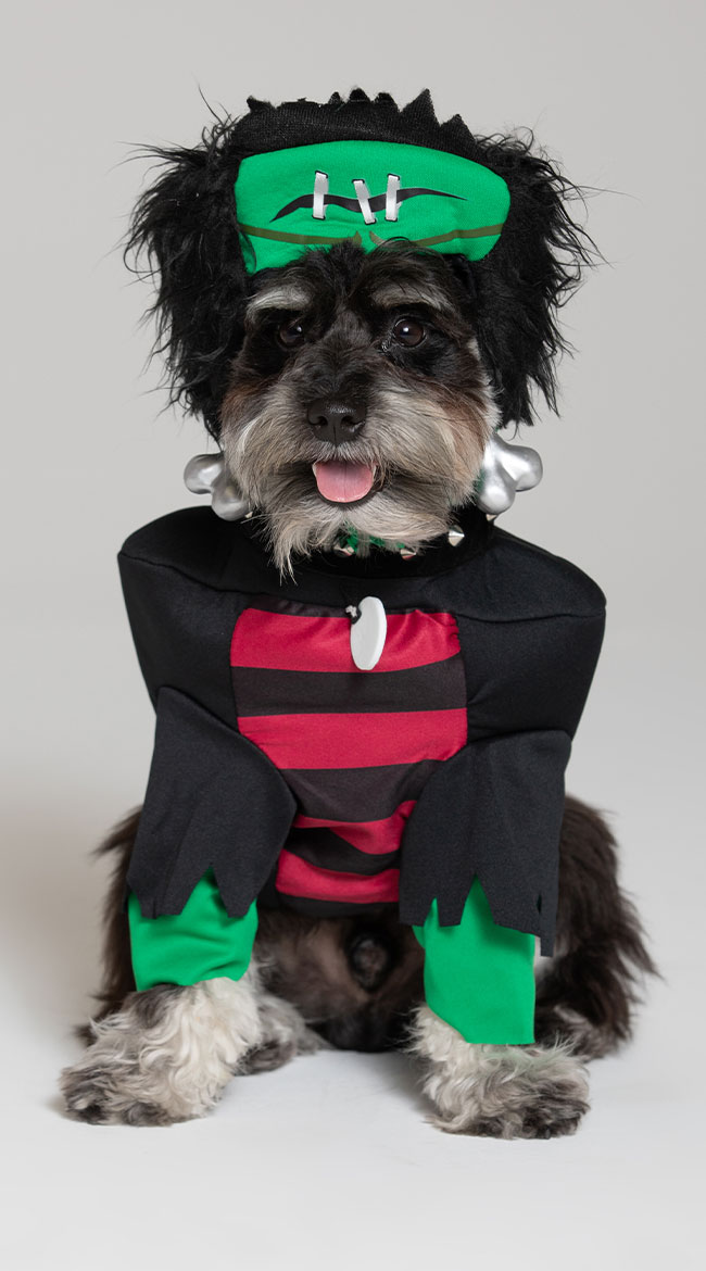 Frankenpup Dog Costume by California Costumes