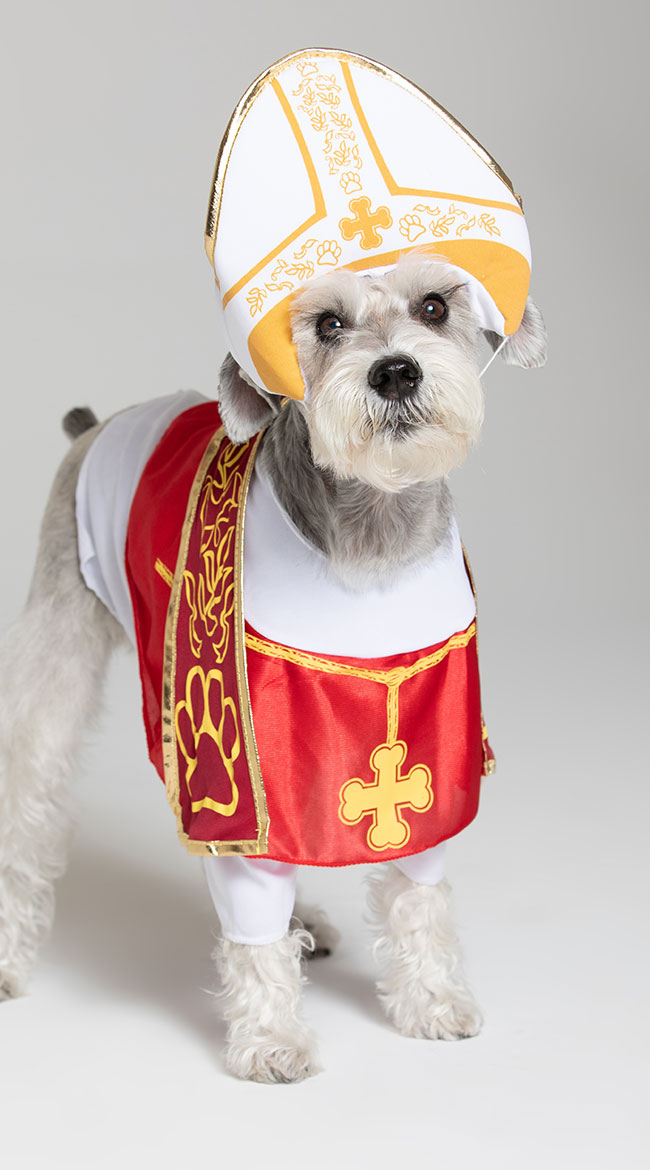 Holy Hound Dog Costume by California Costumes